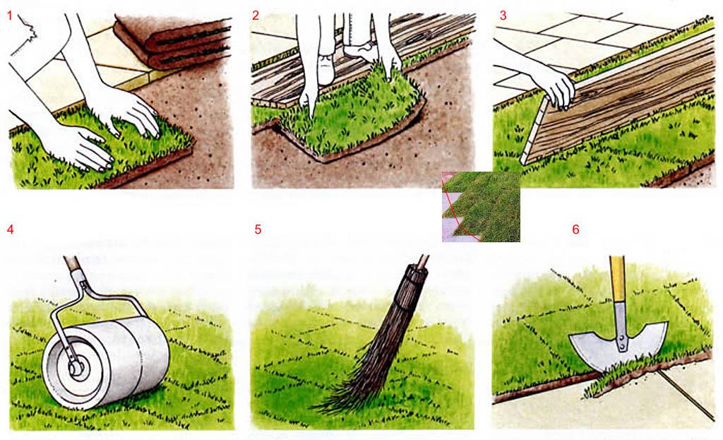 укладання газону