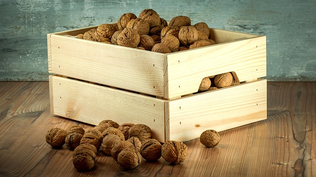 Бізнес ідея – вирощування волоського горіха