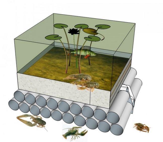 обладнання для вирощування раків