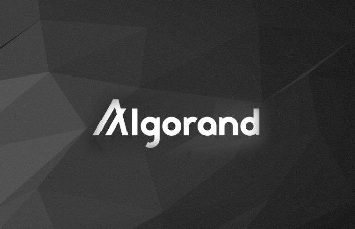 Криптовалюта Algorand (ALGO): огляд
