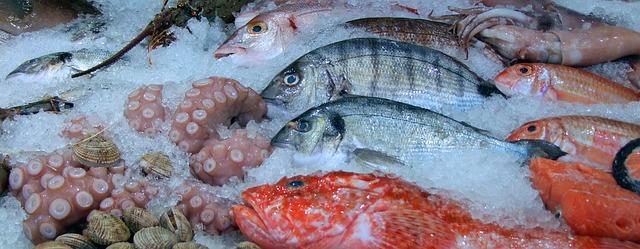 Бізнес ідея: як відкрити рибний магазин